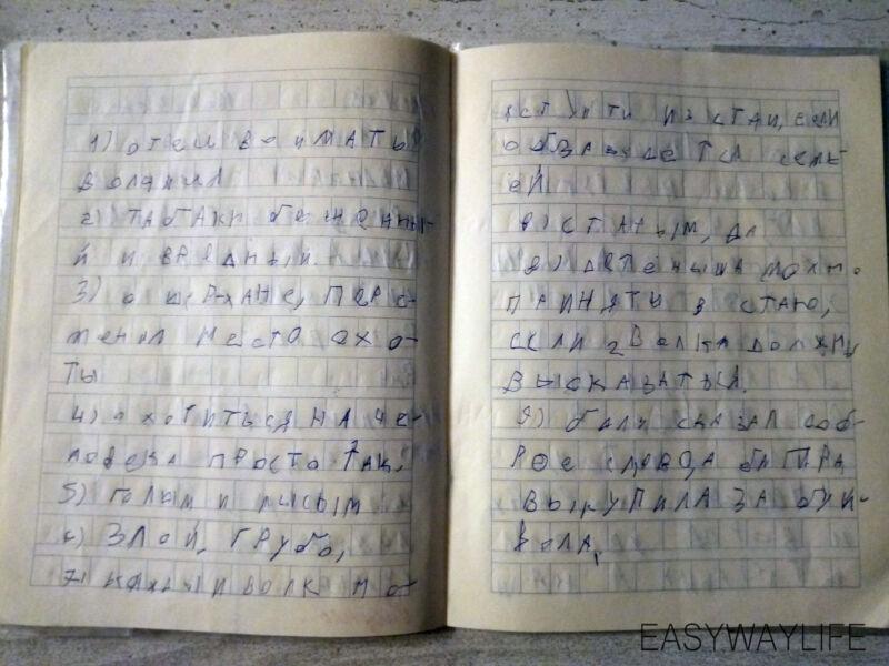 Обучение письму ребенка с ДЦП с помощью книг рис 2