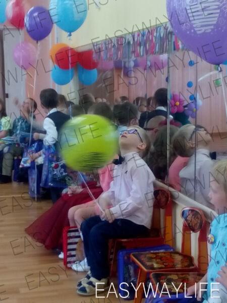 Детский сад и инклюзия детей с овз рис 2